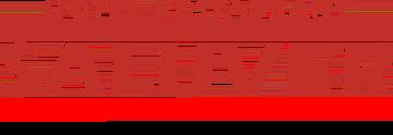 saluver logo